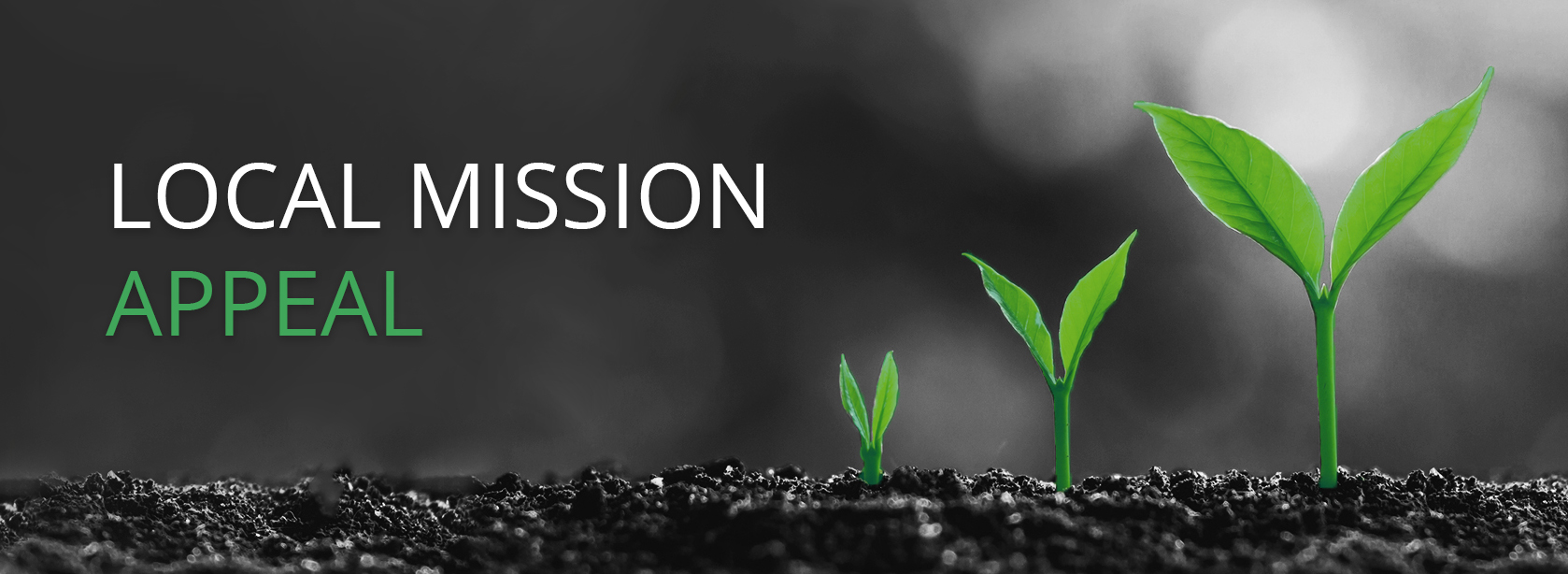 local mission appeal header-Recovered page